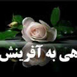 نقدی بر نظریه آفرینش تبعی زن در قرآن
