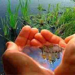 نقش آخرت گرایی در رابطه انسان و محیط زیست از دیدگاه نهج البلاغه؛ دانلود مقالات علوم قرآنی